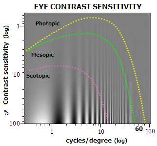 contrast sensitivity function The contrast sensitivity function (csf) has shown promise as a functional vision endpoint for monitoring the changes in functional vision that accompany eye disease.