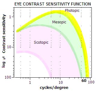 eye intensity response, contrast sensitivity